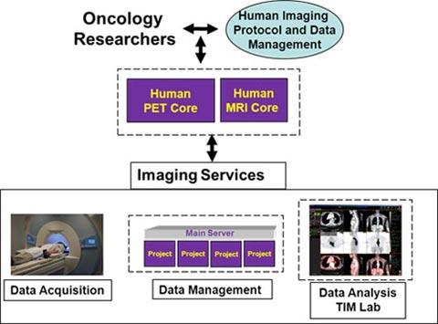 IVIF Human Imaging Diagram