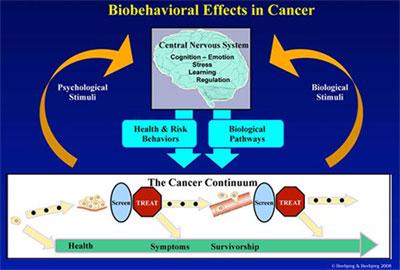 Biobehavioral Effects in Cancer Diagram