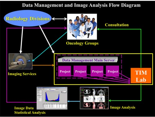 Data Management and Image Analysis Flow Diagram