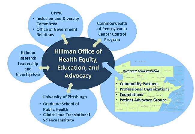 Hillman Office of Health Equity, Education, and Advocacy Interactions